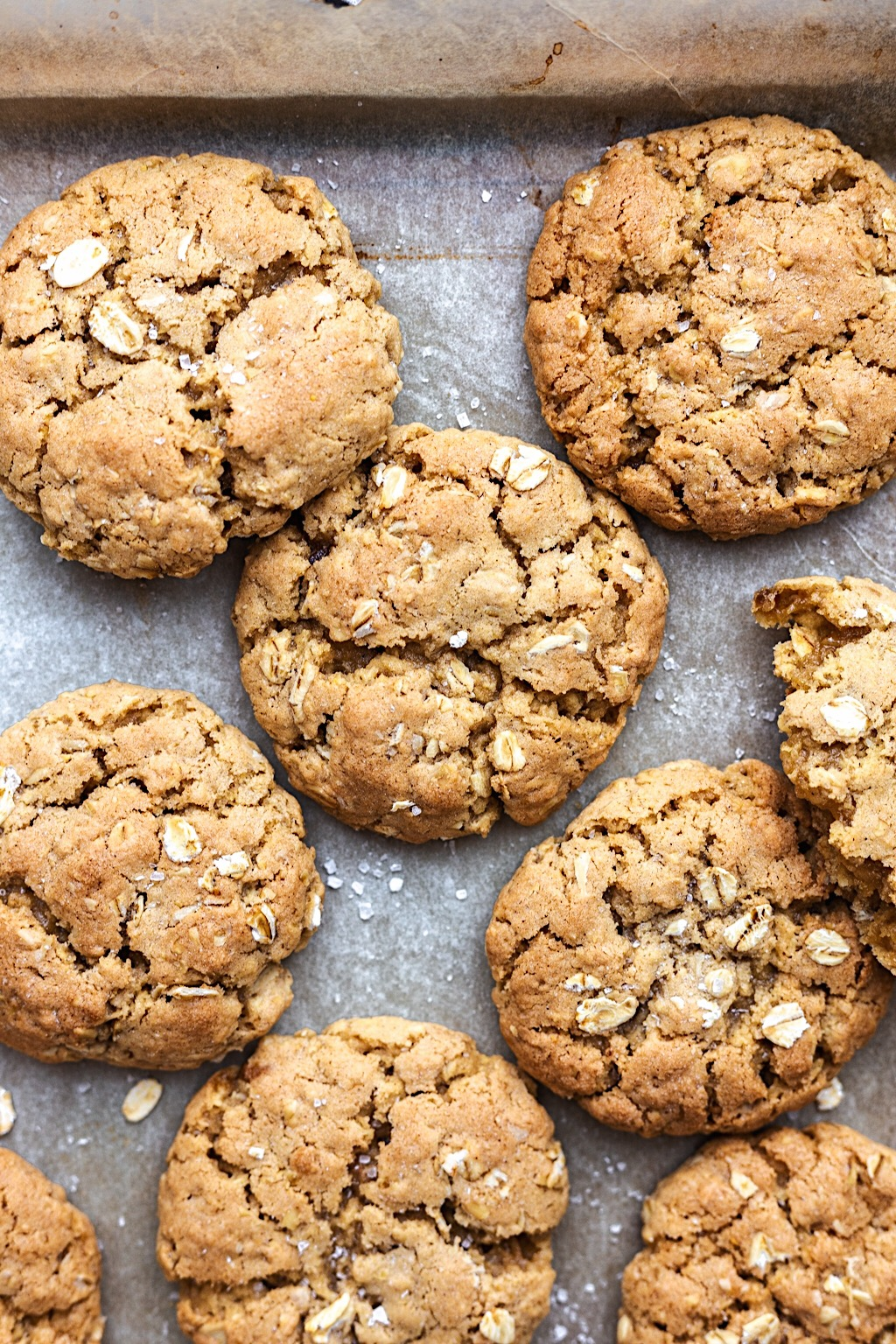 Vegan Chewy Oat Cookies #vegan #oat #cookie #recipe #easy #dairyfree #eggfree